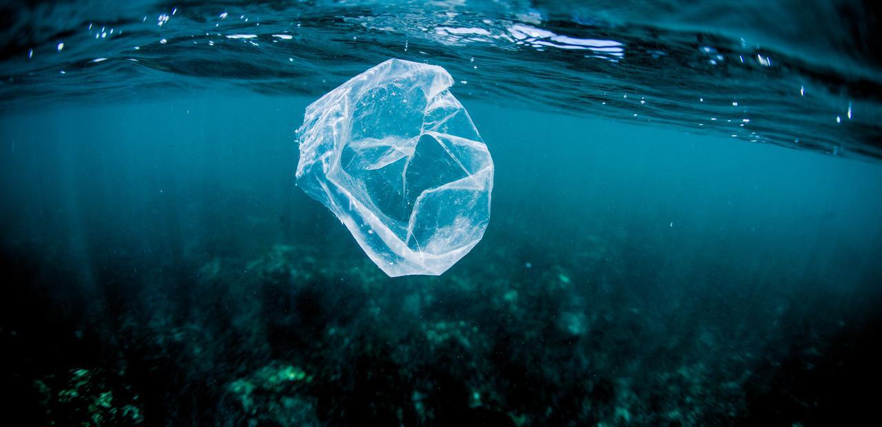 floating plastic bag copy