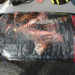 Bag of Lionfish caught off of Scubatyme III